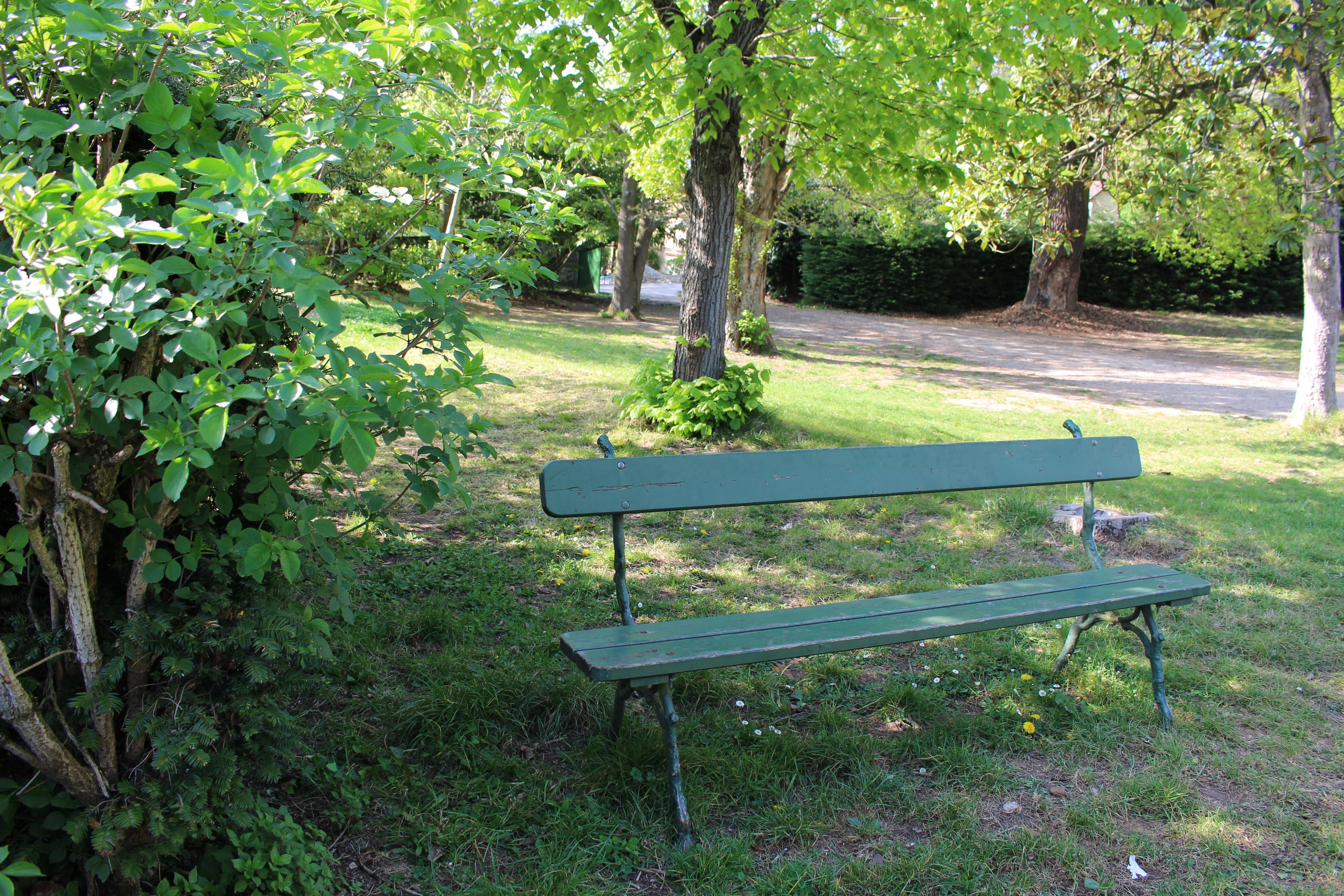 banc dans le parc jpg massabielle vous accueille. Black Bedroom Furniture Sets. Home Design Ideas